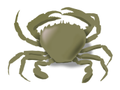 addon_the_crab